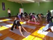 Ashtanga / Vinyasa Yoga / Vinyasa Flow